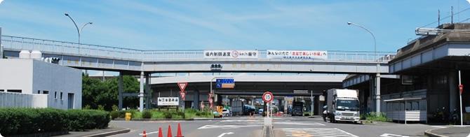 写真:大阪府中央卸売市場とは