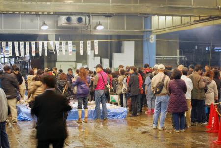 卸売市場の魚の展示