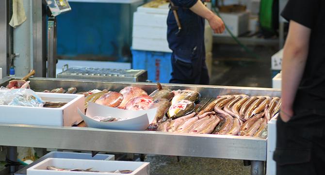 はまじま水産の鮮魚