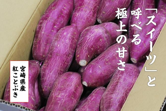 「スイーツ」と呼べる極上の甘さ。宮崎県産紅ことぶき