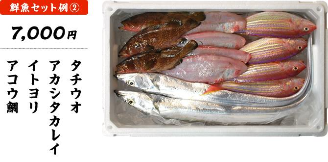 おまかせ鮮魚セット 7,000円