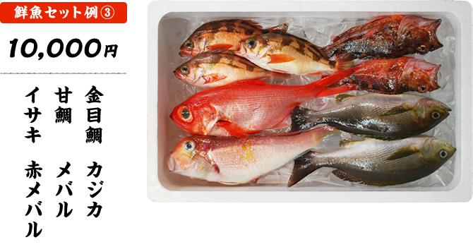 おまかせ鮮魚セット 10,000円