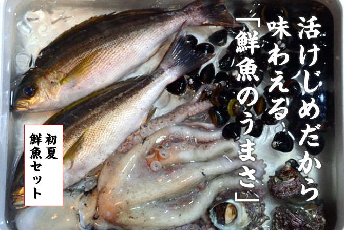 活けじめだから 味わえる 「鮮魚のうまさ」