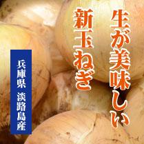 awaji_sintama209