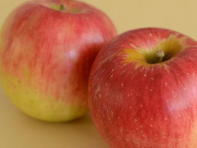 サンつがる りんご