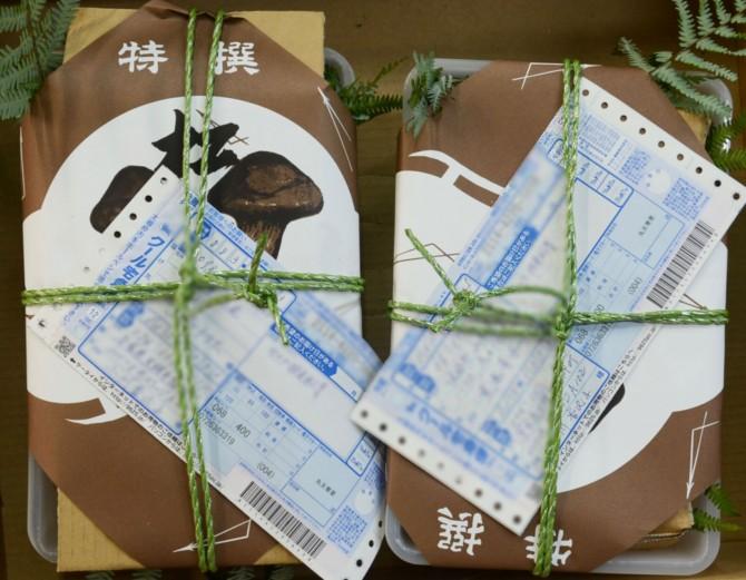 matutake-gift