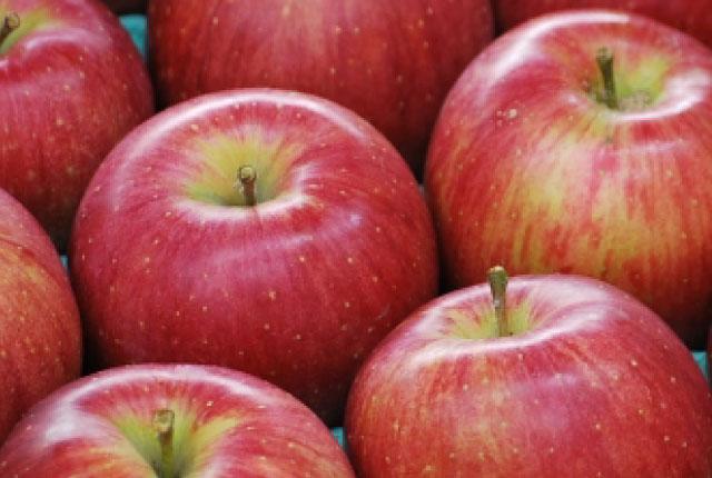 しなのスイート りんご