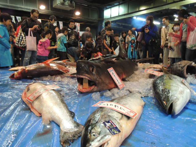 毎年、大人気。巨大魚の展示コーナー。