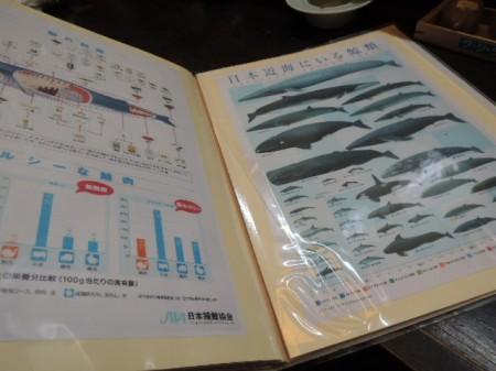 鯨って種類がいっぱいあるんですよね