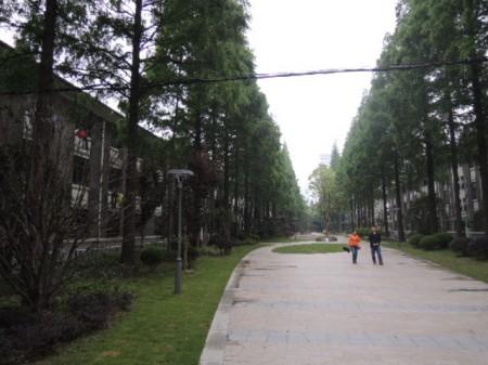 賑やかな上海市街から来るとまるで別世界 両側は学生寮