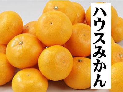 hausumikan