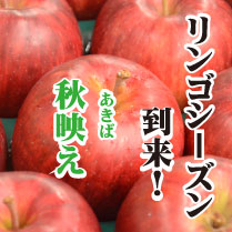 akibae209