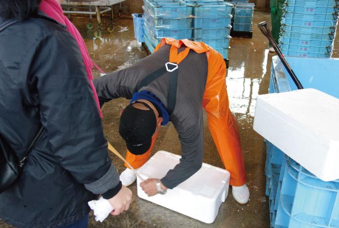 栗田漁港 ピチピチ寿司