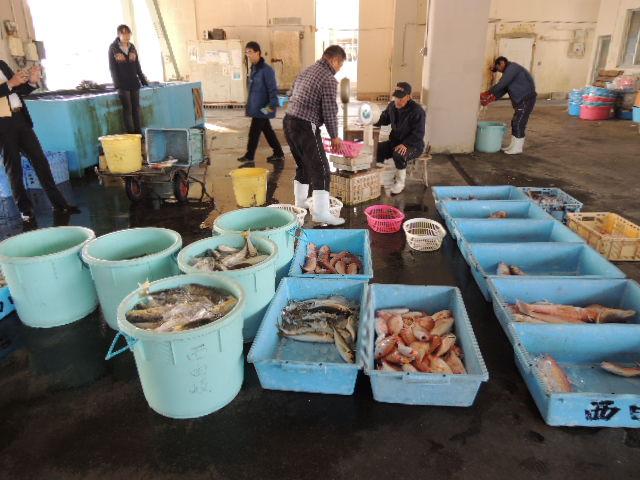 冬場は水温が低く、漁獲高は半減するそうです。