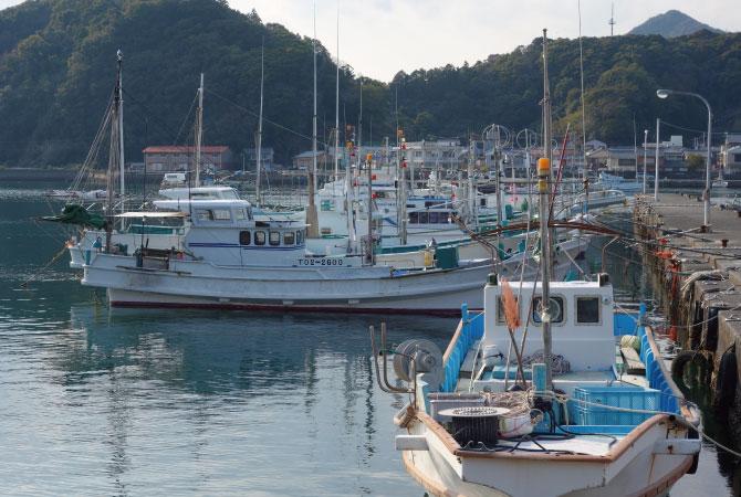 漁港 徳島県