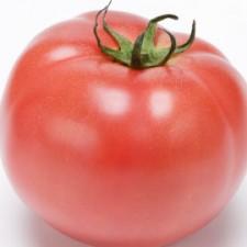 tomato270