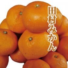 tamura_mikan270